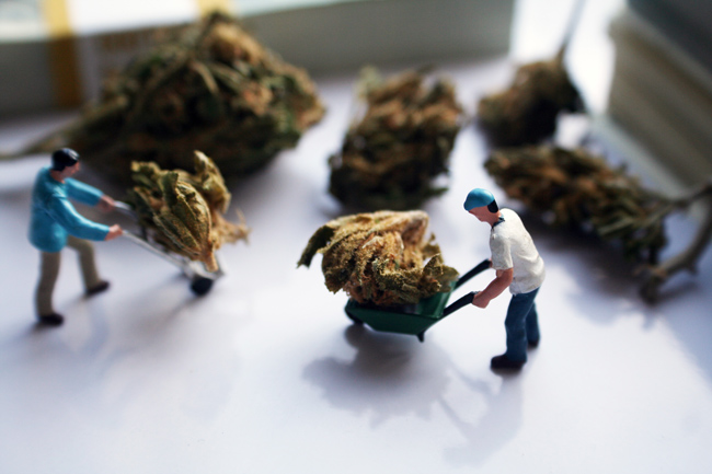 pot-workers